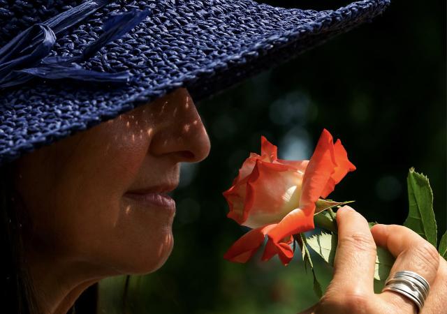 バラの香りで女性ホルモンと上手に付き合おう